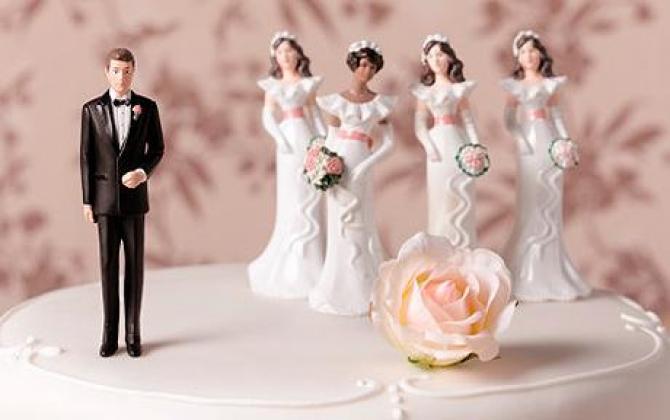 polygamy1_1_36062200