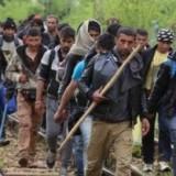 Opriți marea migrație a refugiaților musulmani în România