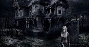 halloween-halloween-8448006-1024-768