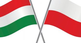 Ungaria și Polonia au apărat poziția statului român în ceea ce privește nerecunoașterea căsătoriei gay la Curtea Europeană de Justiție.