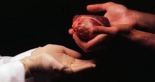 Acordul prezumat pentru donarea de organe, sau dreptul statului de a te omorî şi a-ţi trafica organele