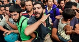 Mai multe ong-uri protestează în fața MAE împotriva pactului pentru imigrație