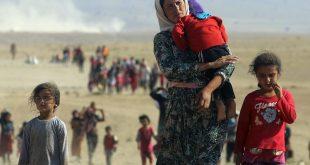 Alegeri Olanda: Refugiații CREŞTINI SIRIENI îl sprijină pe Geert Wilders la alegerile locale. Aflaţi motivul