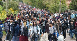 Teoria conspirației naște controverse. Europa invadată de arabi?