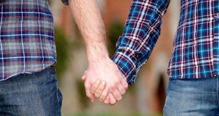 Florin Ianovici: Parteneriatul civil pentru cuplurile de același sex era in sertar