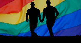 PSD nu mai vrea legea parteneriatului civil. Proiectul ar putea fi blocat în Parlament