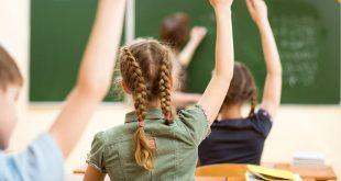 Scrisoare deschisă către Premierul Viorica Dăncilă: Nu educați copiii României conform ideologiei de gen!