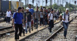 """Pactul pentru Migrație este împotriva formei de stat național"""""""